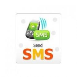 Zucker HONEYWELL - Abonnement-2 jahre-GSM / SMS